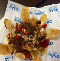 Pulled Beef Potato Nachos